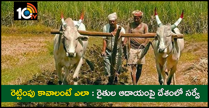 Government to conduct survey to assess plight of farmers