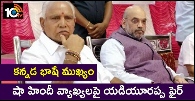 """Won't Compromise,"""" Says BS Yediyurappa After Amit Shah's Hindi Pitch"""