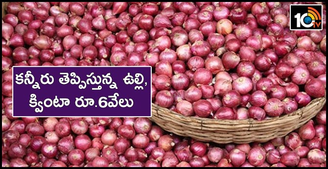 quintal ONION price gone to 6 thousand rupees