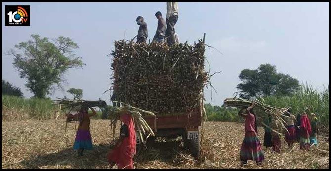 కుటుంబ పోషణ కోసం….గర్భం తీసేయించుకున్న 30వేల మంది కూలీలు