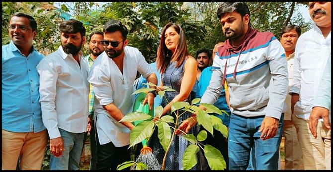 sai dharam tej, rashi khanna plant trees