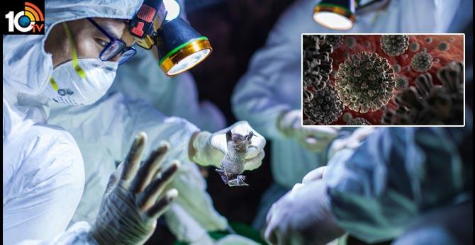 Global coronavirus cases cross 1,500,000