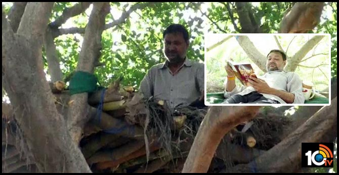 Hapur man builds makeshift tree house to spend time amid lockdown
