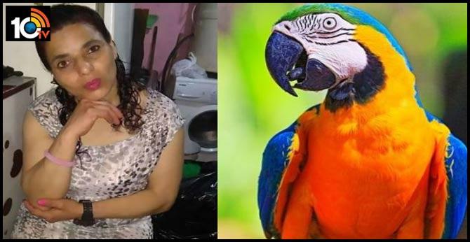 Parrot key witness in rape and murder trial as it 'heard owner's last words'