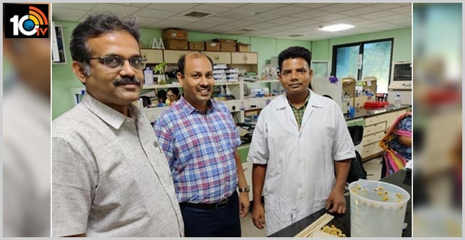 Copper-coated Jute Beads can prevent Microbial Contamination in Stored Water