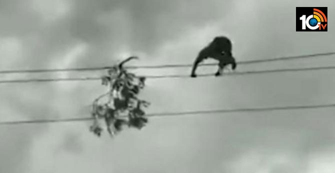 Man walks on electric wires to restore power