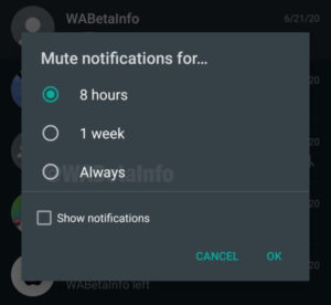 WhatsApp could finally let you mute those pesky group chats forever