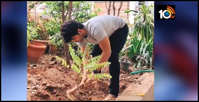Allu Sirish Completed Green India Challenge