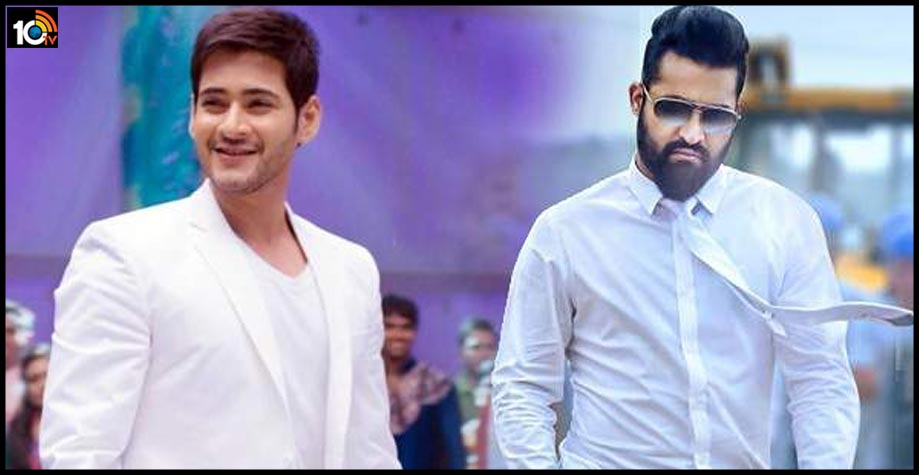 social-media-war-between-mahesh-and-ntr-fans1