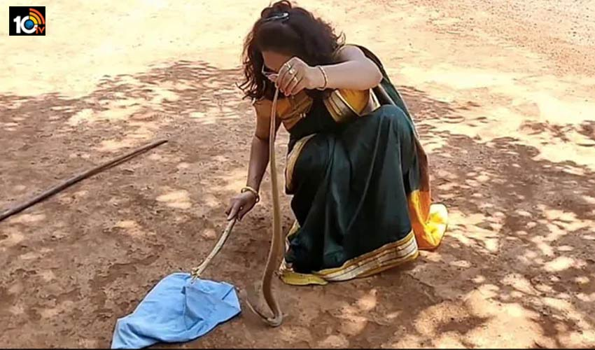 Snake Rescue : చీర కట్టి పామును పట్టేసిన మహిళ, video viral