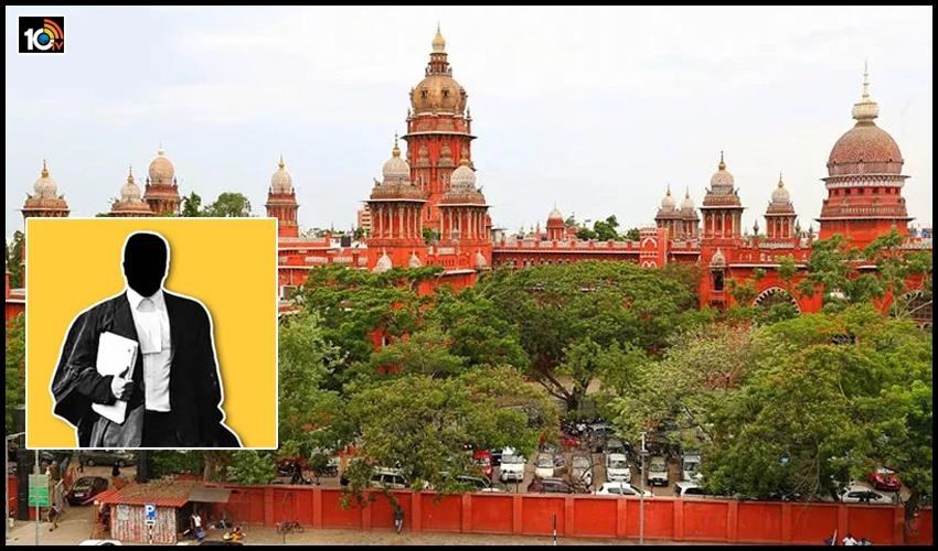 న్యాయవాదివేనా సిగ్గులేదా? : లాయర్ కు రూ.5లక్షలు జరిమానా వేసిన హైకోర్టు