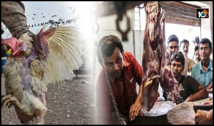 సంక్రాంతిపై బర్డ్ ఫ్లూ ఎఫెక్ట్ : హైదరాబాద్ లో మూడున్నర లక్షల కేజీల మటన్ అమ్మకాలు