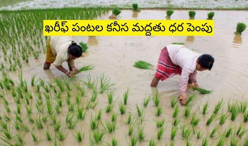 MSP For Kharif Crops : ఖరీఫ్ పంటల కనీస మద్దతు ధర పెంపు