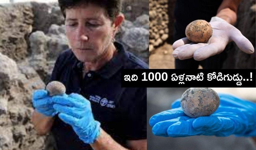 Thousand Years Egg: తవ్వకాల్లో బైటపడ్డ వెయ్యేళ్ల నాటి కోడిగుడ్డు!