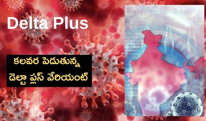 India : కలవర పెడుతున్న డెల్టా ప్లస్ వేరియంట్ కేసులు