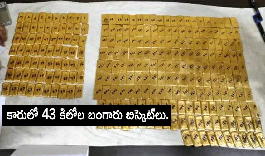Gold Biscuits : కారులో 43 కిలోల బంగారు బిస్కెట్లు.