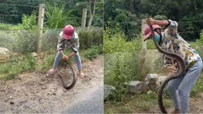 Viral Videos: ఈమె ధైర్యం ముందు పది అడుగుల పామైనా సాహో అనాల్సిందే!
