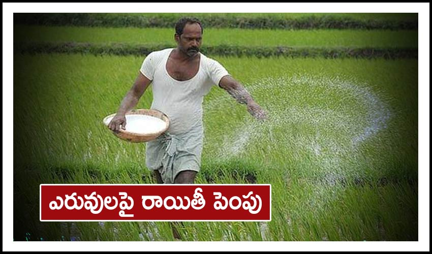 Subsidies For Fertilisers : ఎరువులపై రాయితీ పెంపు