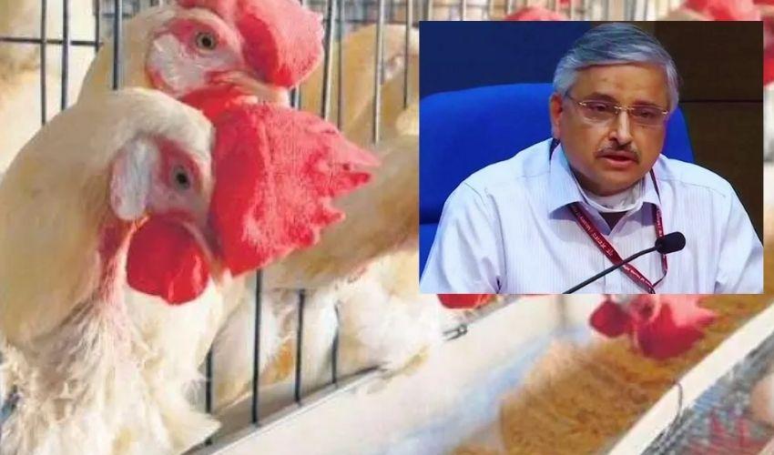 Bird Flu : మనుషుల నుంచి మనుషులకు సోకే ప్రమాదం తక్కువే!