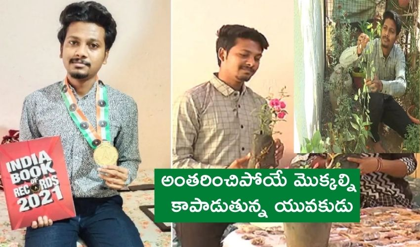Palanpur Seed Bank : అంతరించే మొక్కల్ని కాపాడుతున్న యువ టీచర్..ఇండియా బుక్ ఆఫ్ రికార్డ్స్ గుర్తింపు