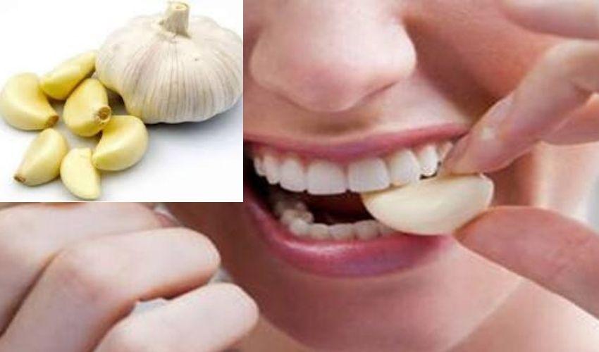 Garlic : వెల్లుల్లి..ఔషద గుణాల కల్పవల్లి