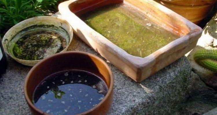 Waste Water Storage
