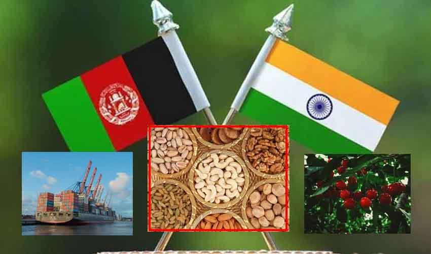 Afghanistan Exports : అఫ్ఘానిస్తాన్.. భారత్కు ఎగుమతి చేసిన వస్తువుల జాబితా