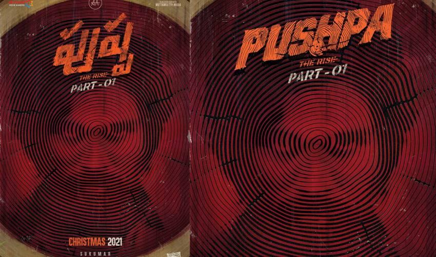 Pushpa The Rise Part – 01 : 'పుష్ప రాజ్' క్రిస్మస్కి వస్తాండాడబ్బా..