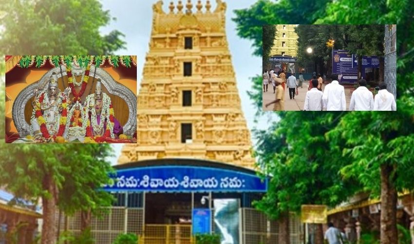 Srisailam : శివోహం, భక్తులకు సర్వదర్శనాలు
