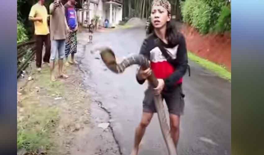 Woman Catches Giant Snake : OMG.. నీ గట్స్కి హ్యాట్సాఫ్.. వట్టి చేతులతోనే పేద్ద పాముని ఎలా పట్టుకుందో చూడండి…