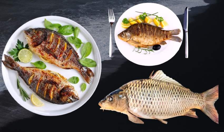 Eating Fish : చేపలు తింటే బరువు తగ్గుతారా!..