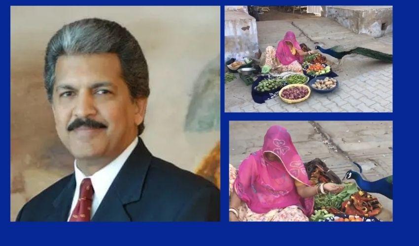 Anand Mahindra : మానవత్వం బతికే ఉంది, ఆనంద్ మహీంద్రా వీడియ