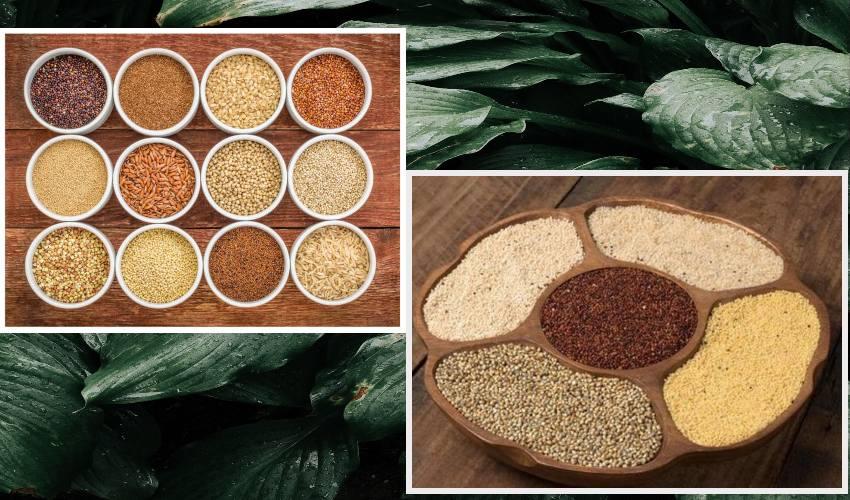 Millets Diet : మారుతున్న ఆహారపు అలవాట్లు… చిరుధాన్యాలవైపు మొగ్గు