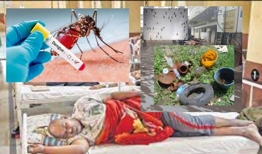 Telangana Dengue : హైదరాబాద్ లో పెరుగుతున్న డెంగ్యూ కేసులు