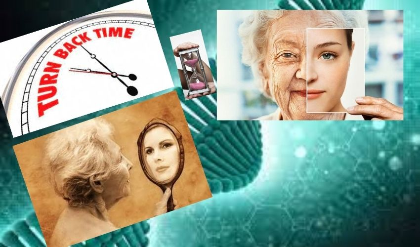 Reverse Aging :వృద్ధాప్యం రాకుండా..అమెజాన్ అధినేత కోట్లు ఖర్చు పెట్టారా? వయస్సు తగ్గించటం సాధ్యమేనా?