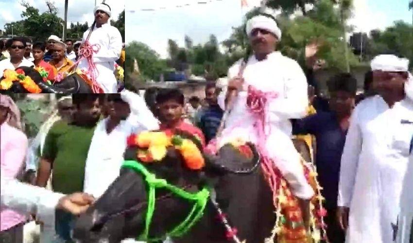 Bihar Panchayat Polls : గేదెపై వచ్చి నామినేషన్..ఎందుకో తెలుసా