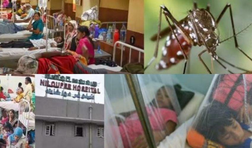 Dengue : చిన్నారులపై డెంగీ పంజా