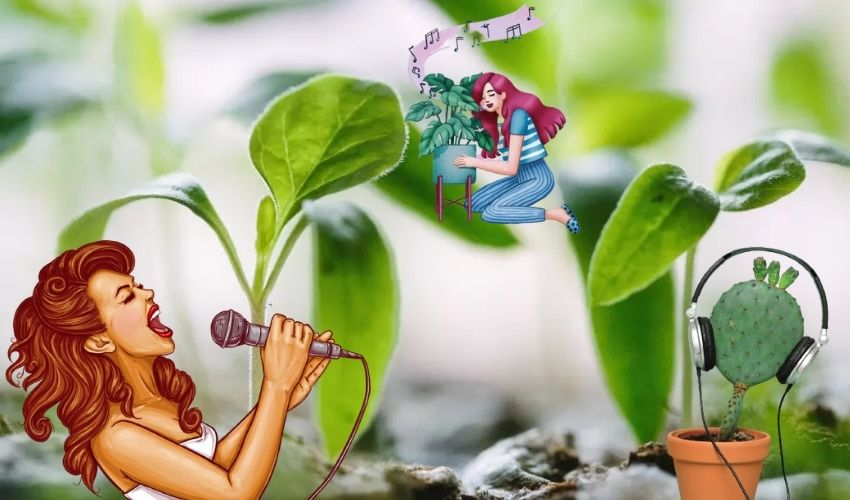 https://10tv.in/life-style/does-talking-or-singing-to-plants-help-them-to-grow-better-281897.html