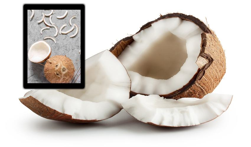 https://10tv.in/life-style/anemia-pogotte-coconut-296975.html