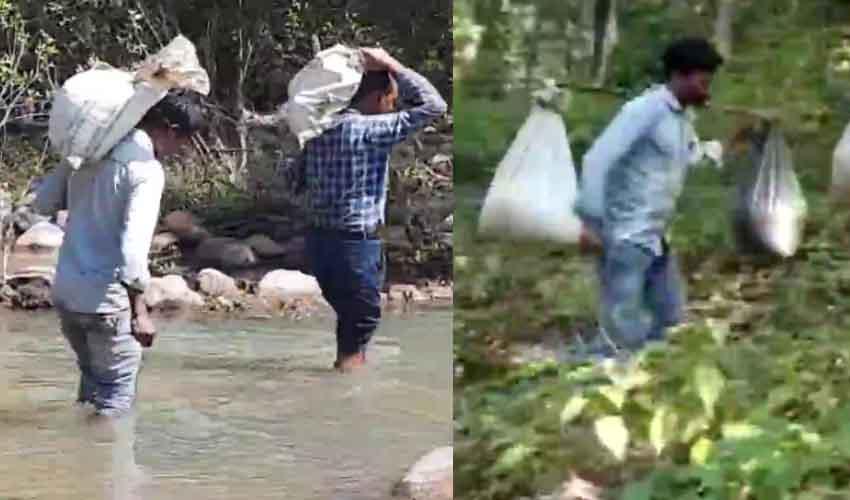 Chhattisgarh : పిల్లల కడుపు నింపేందుకు టీచర్ల సాహసం.. భుజాన సరుకులతో 8 కి.మీ నడక
