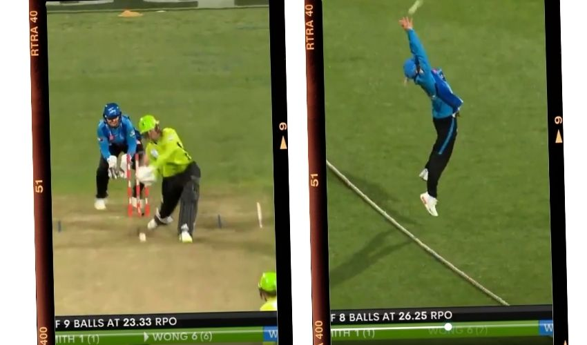 https://10tv.in/sports/adelaide-strikers-bridget-patterson-takes-jaw-dropping-catch-293500.html