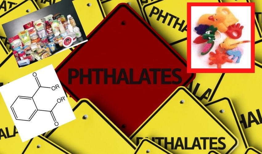 https://10tv.in/international/danger-phthalates-group-of-chemicals-taking-lives-of-over-one-lakh-people-in-america-every-year-says-a-study-291589.html