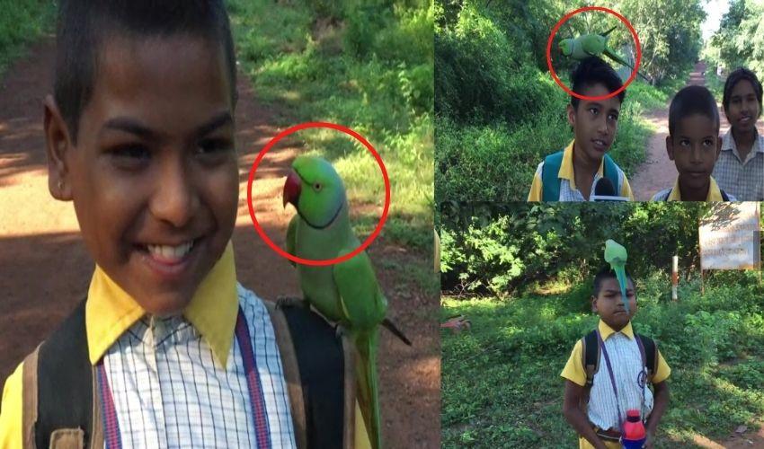 Friendship parrot : స్కూల్ పిల్లలతో దోస్తీ చేస్తున్న చిలకమ్మ..'నువ్వూ నేను ఓ జట్టు'అంటోంది