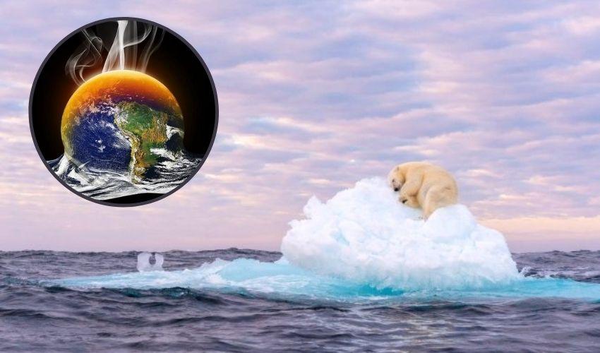 https://10tv.in/international/photography-awards-polar-bear-pic-lazing-on-iceberg-climate-change-wins-prize-294624.html