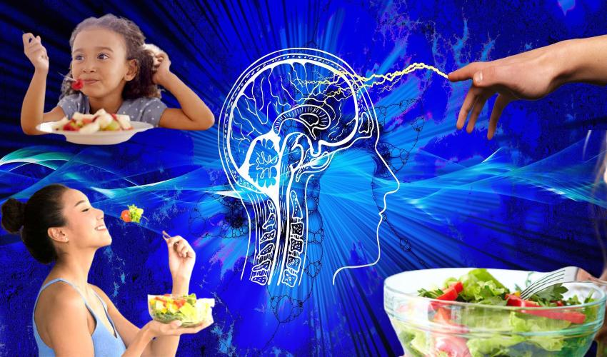 Brain Function : మెదడు పనితీరు మెరుగు పరిచే ఆహారాలు ఇవే!..