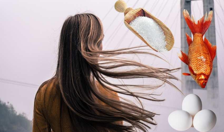 Hair Fall : చేప,చక్కర, గుడ్డు తెల్లసొన అధికంగా తింటున్నారా! అయితే అది రావటం ఖాయం?